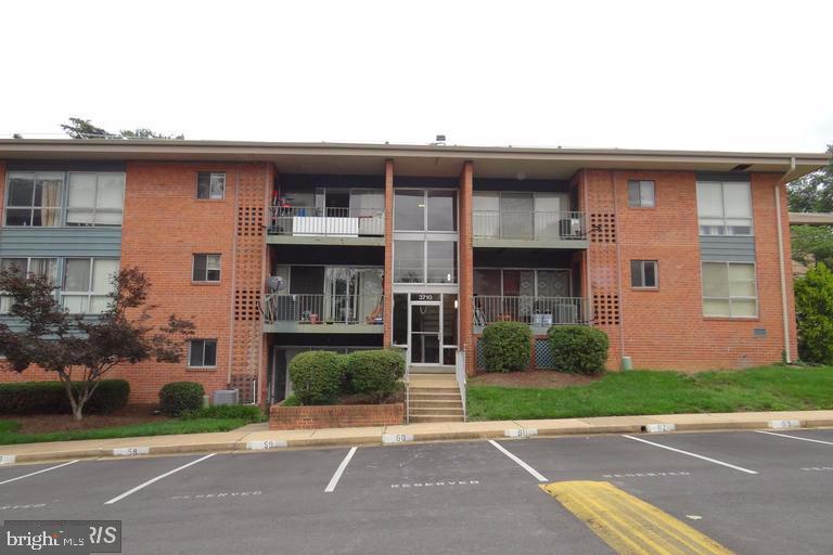 Front of building (Parking spot #58 on left side) - 3710 N ROSSER ST #T3, ALEXANDRIA