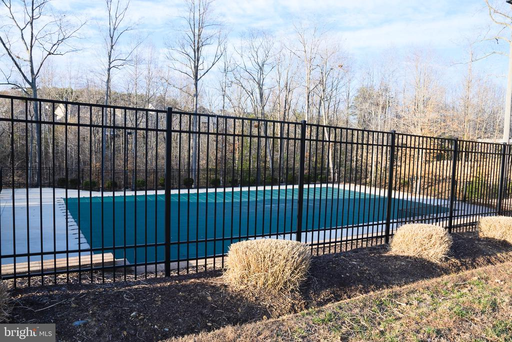 Outdoor Pool - 160 BURLEY ST #101, STAFFORD