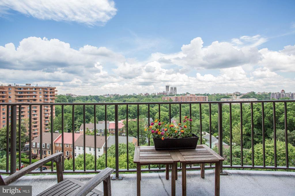VIEW FROM THE TERRACE - 3101 NEW MEXICO AVE NW #1009, WASHINGTON
