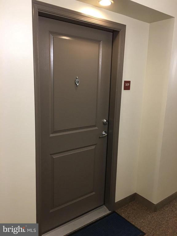 Unit front door - 7915 EASTERN AVE #509, SILVER SPRING