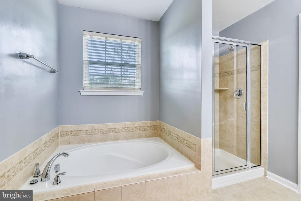Master bath has separate shower - 25635 LAUGHTER DR, ALDIE