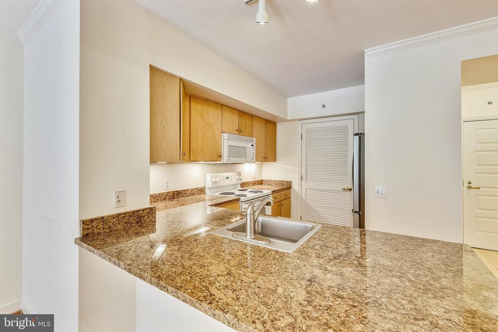 Lots of Counter Space! - 616 E ST NW #302, WASHINGTON