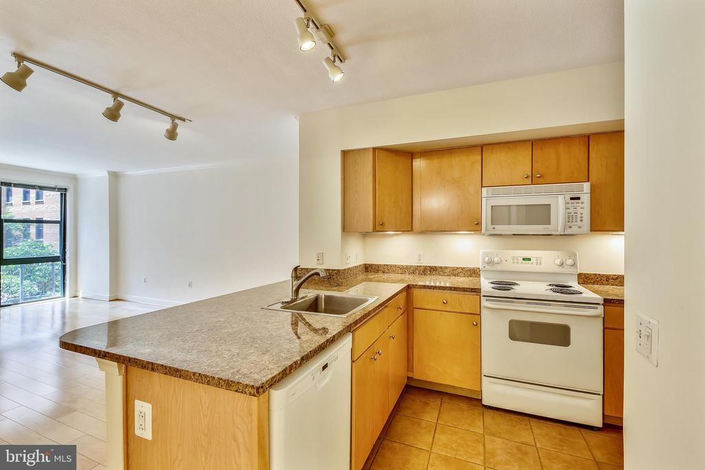 Granite Kitchen with Breakfast Bar - 616 E ST NW #302, WASHINGTON