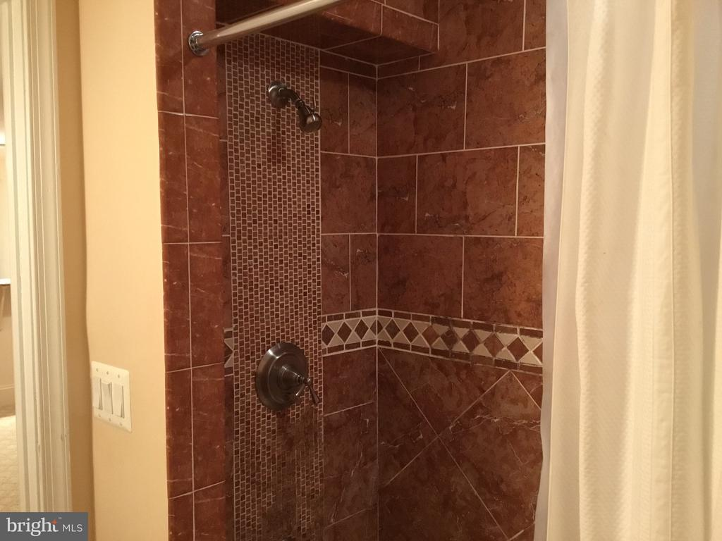 Basement custom bathroom - 22778 OATLANDS GROVE PL, ASHBURN