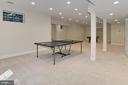 Lower Level Rec Room - 7307 ALLAN AVE, FALLS CHURCH