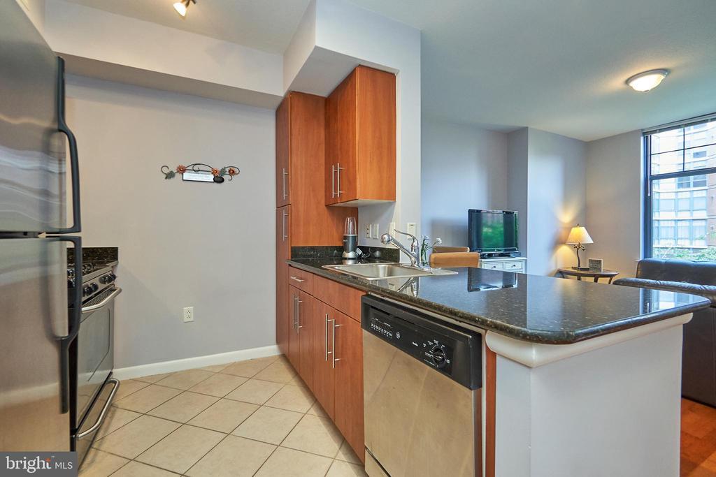 Gourmet kitchen - 1021 N GARFIELD ST #323, ARLINGTON