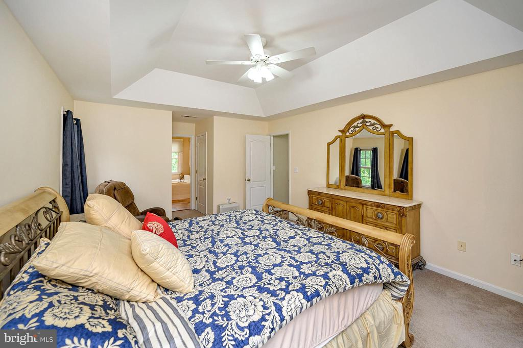 Master suite with tray ceilings - 109 ASHLAWN CT, LOCUST GROVE