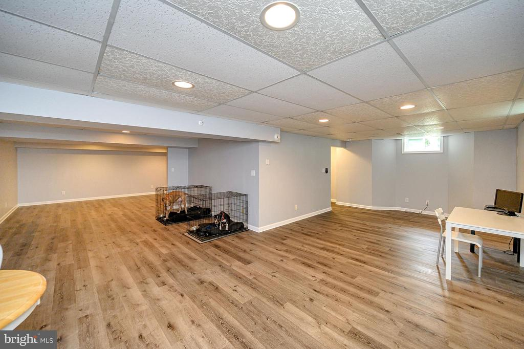 Finished basement with new laminate flooring - 109 ASHLAWN CT, LOCUST GROVE