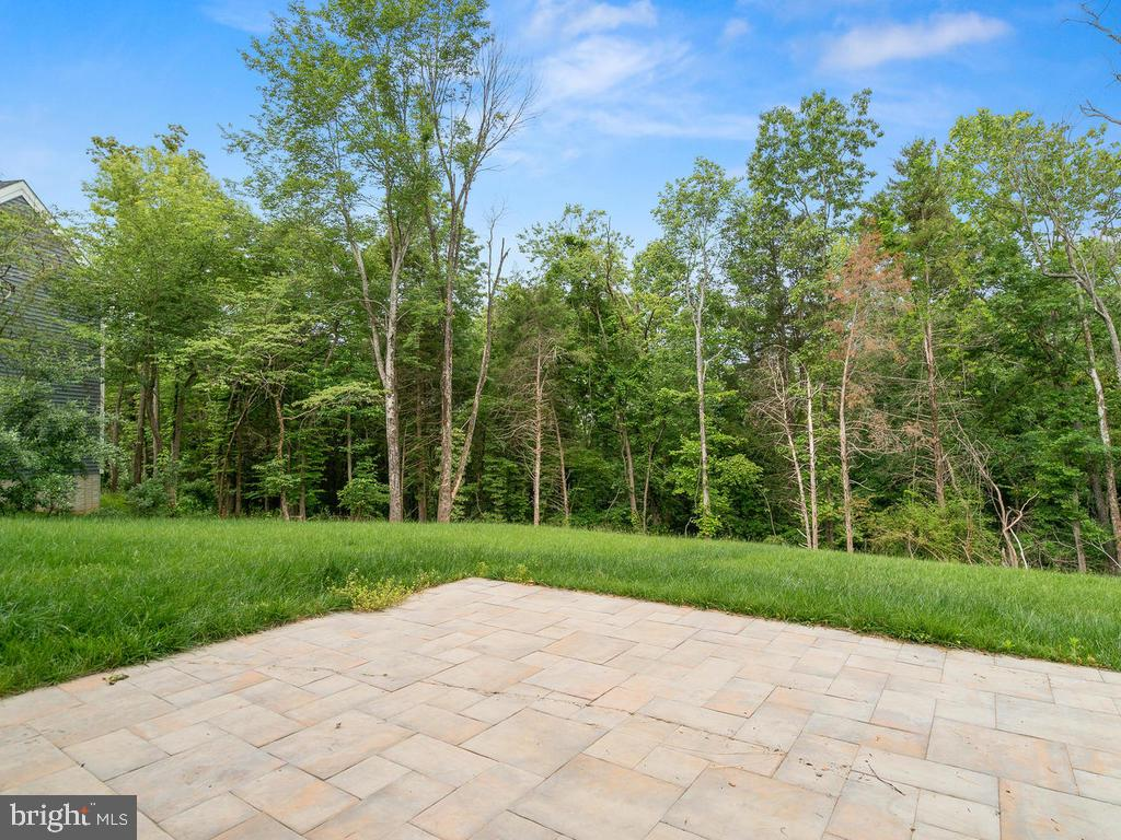 Patio looks over huge grass yard ready for parties - 39177 ALDIE RD, ALDIE