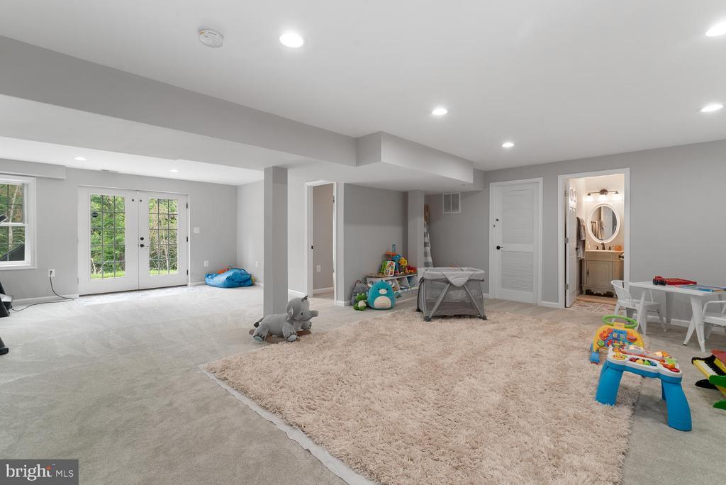 Walk out basement - 39177 ALDIE RD, ALDIE