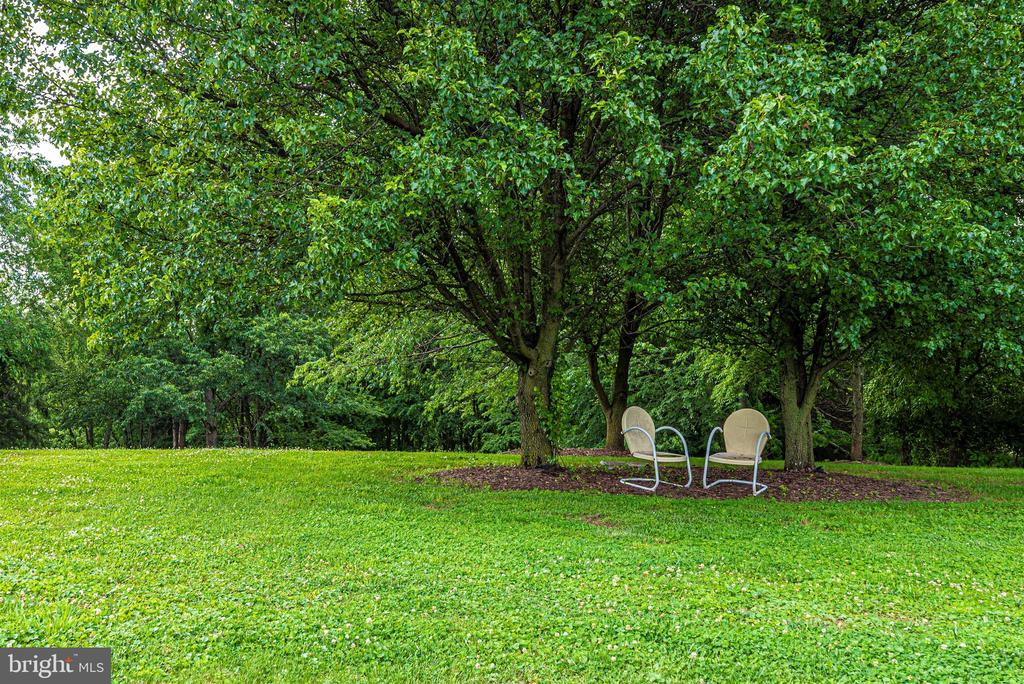 Rear Yard - 3842 MOUNT AIRY DR, MOUNT AIRY