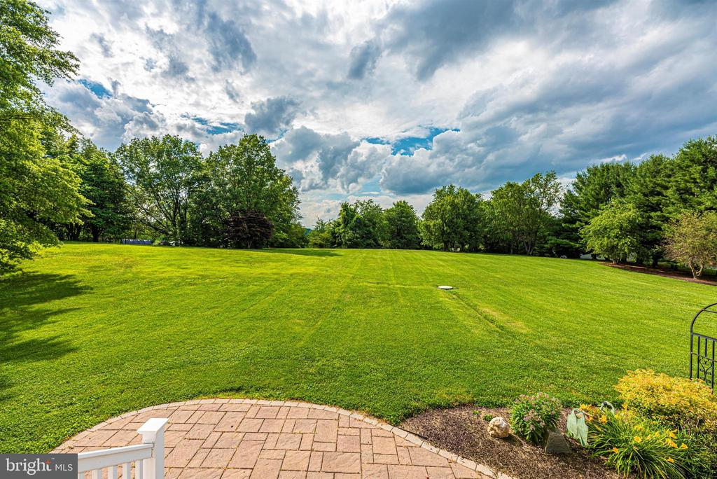 Breathtaking Rear Yard - 3842 MOUNT AIRY DR, MOUNT AIRY
