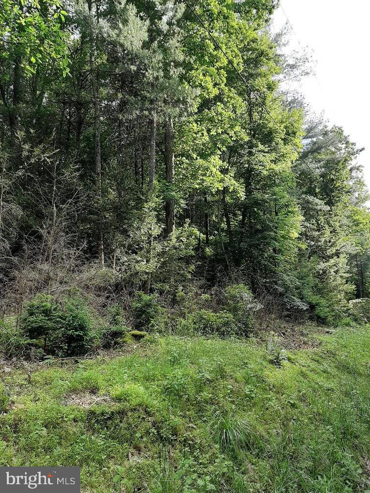 Land for Sale at Elliottsburg, Pennsylvania 17024 United States
