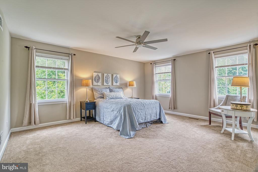 So much space in this expansive master suite. - 6676 STONEBROOK DR, CLIFTON