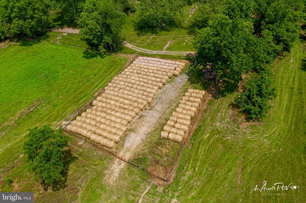 High Yield Weed-Free Hay Field - 2486 LONGMARSH RD, BERRYVILLE