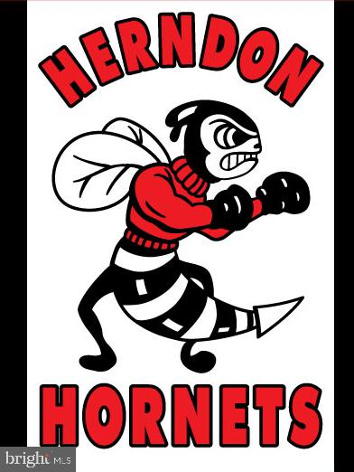 Herndon HS Hornets! - 12110 WALNUT BRANCH RD, RESTON