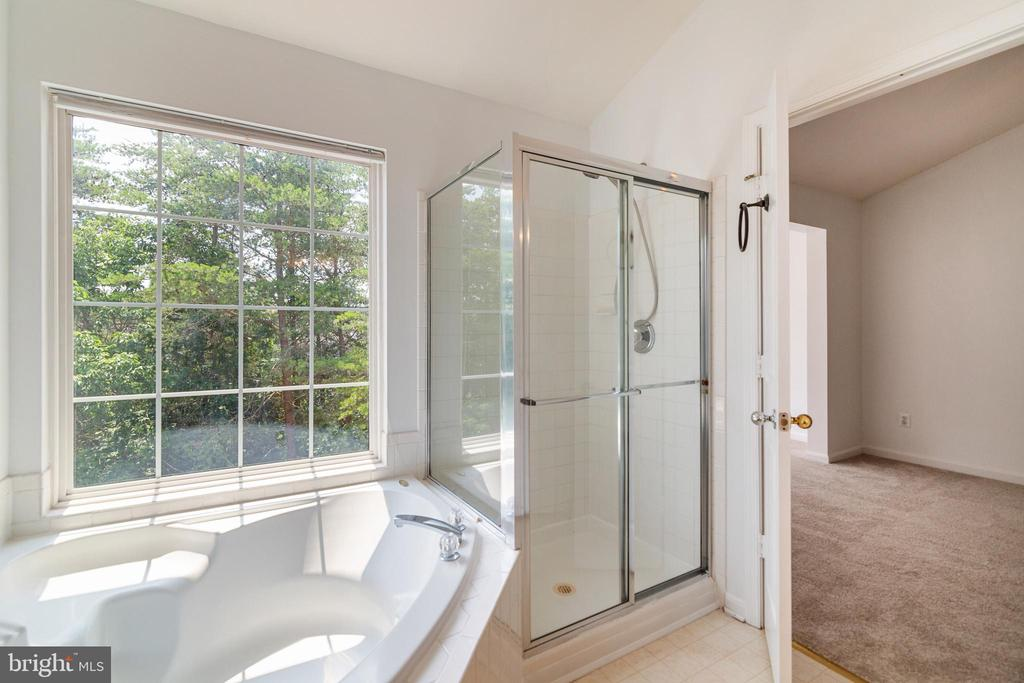 Master En Suite with  Separate Tub and Shower - 13433 CATAPULT LN, BRISTOW