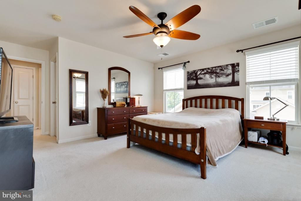 Master Bedroom Suite with Plenty of Light - 23402 HIGBEE LN, BRAMBLETON