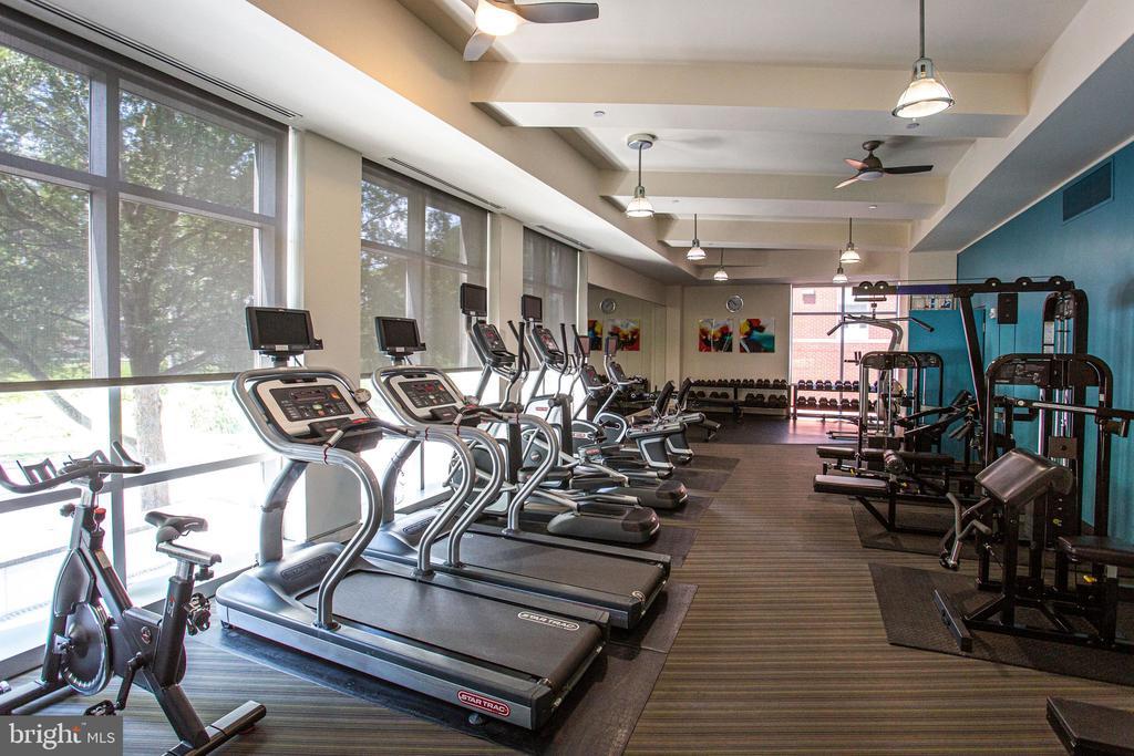 Exercise room - 4101 ALBEMARLE ST NW #618, WASHINGTON