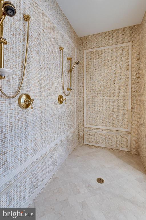 Master Shower - 9637 MAYMONT DR, VIENNA