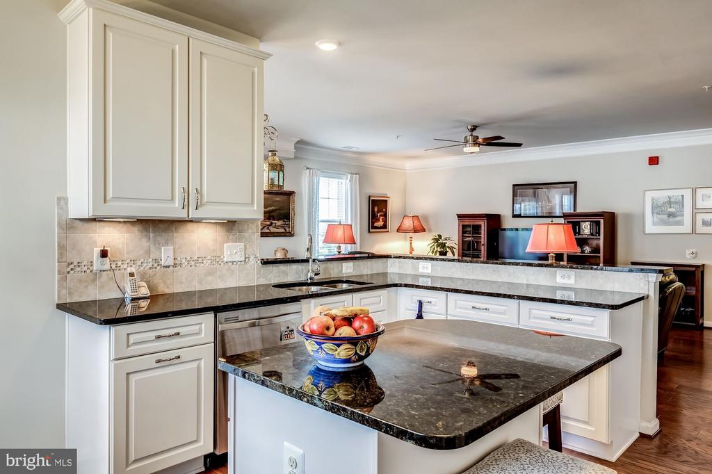 Gourmet kitchen with exquisite details - 20660 HOPE SPRING TER #407, ASHBURN
