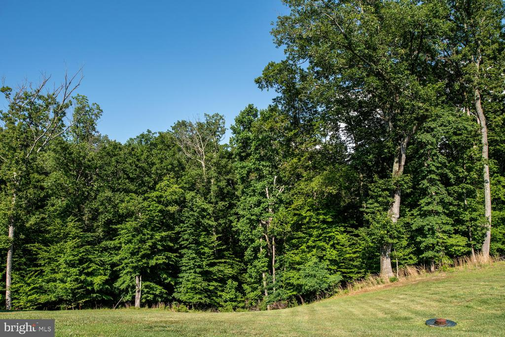 Backs to trees!! - 4950 CAMP GEARY LN, STAFFORD