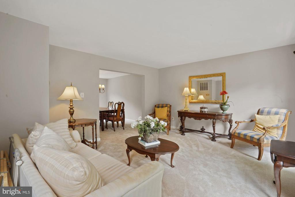 Large and warm living room - 20311 BROAD RUN DR, STERLING