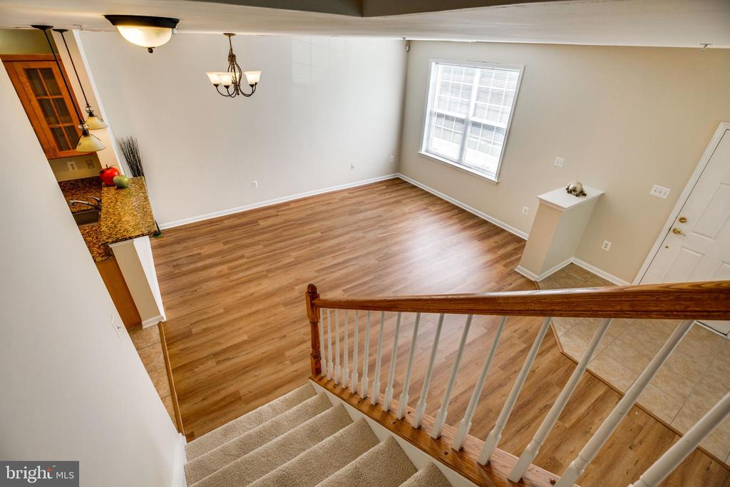 View from Above - 22755 SETTLERS TRAIL TER, BRAMBLETON