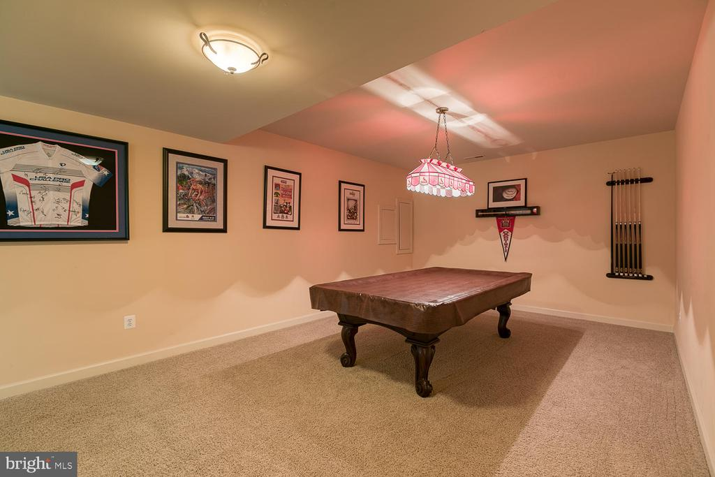 Rec Room w/ Space for Pool Table - 6 MOUNT ARARAT LN, STAFFORD