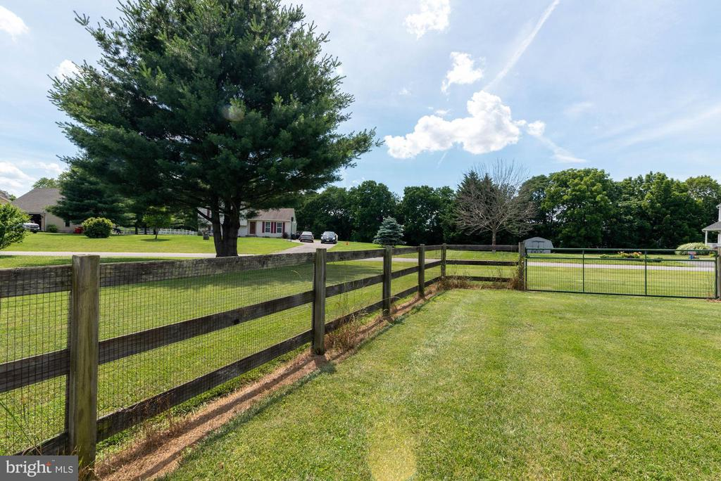 FENCED YARD. PROPERTY LINE NEAR THE TREE - 390 NANSFIELD DR, HARPERS FERRY