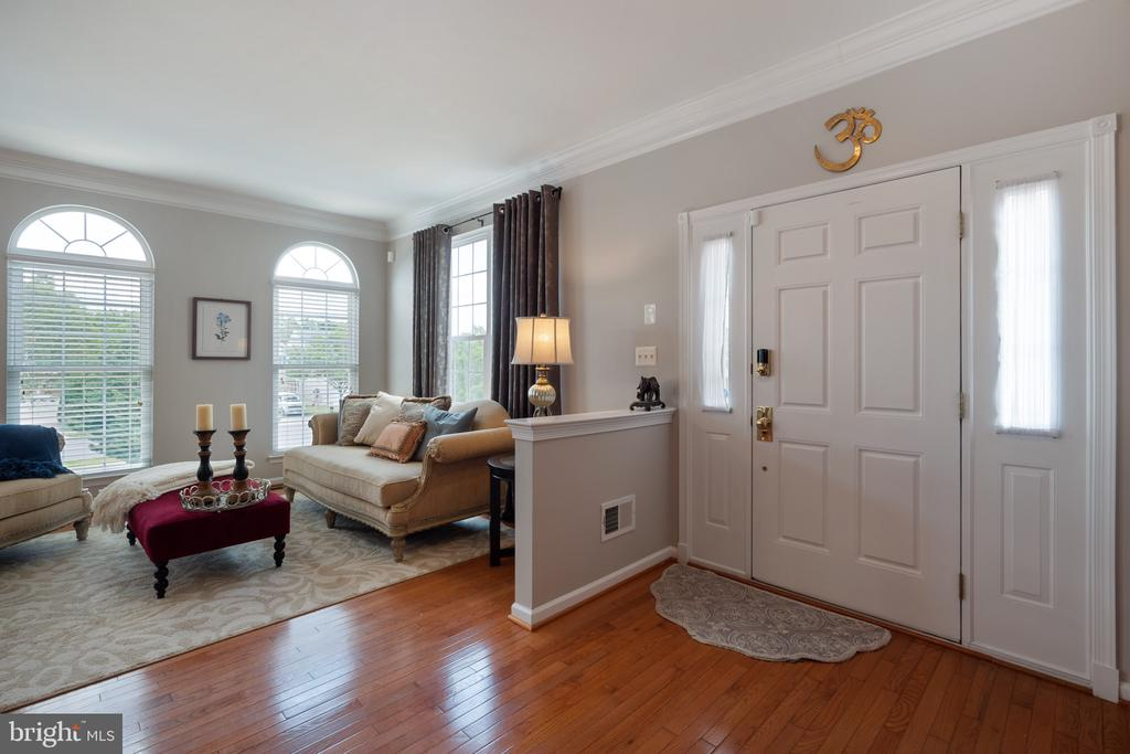 Walk Into Your Cozy & Elegant New Home! - 42919 SHELBOURNE SQ, CHANTILLY