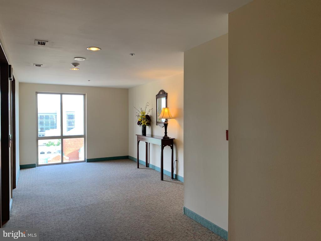 8th Level Lobby - 24 COURTHOUSE SQ #810, ROCKVILLE