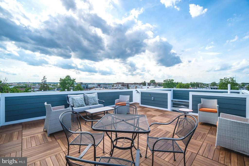 PRIVATE rooftop deck with panoramic views - 432 MANOR PL NW #2, WASHINGTON