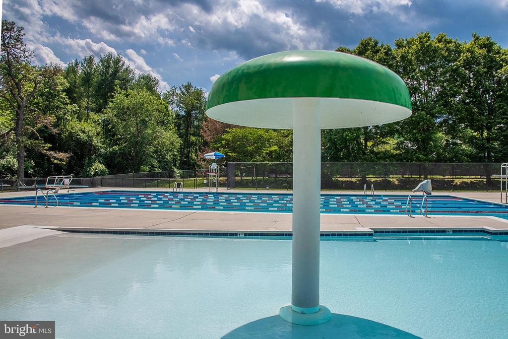 Community Pool - 10227 QUIET POND TER, BURKE