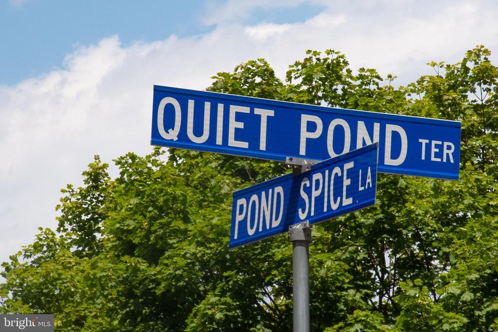 Quiet Pond Street - 10227 QUIET POND TER, BURKE