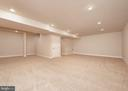 Huge finished basement - 10968 EIGHT BELLS LN, COLUMBIA