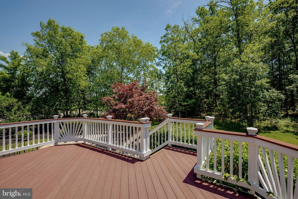 Composite Deck overlooking Matured Trees - 42355 EQUALITY ST, CHANTILLY