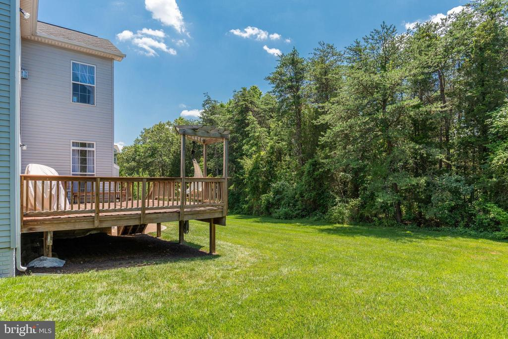 MATURE TREES PROVIDES A LOT OF PRIVACY - 42345 ASTORS BEACHWOOD CT, CHANTILLY