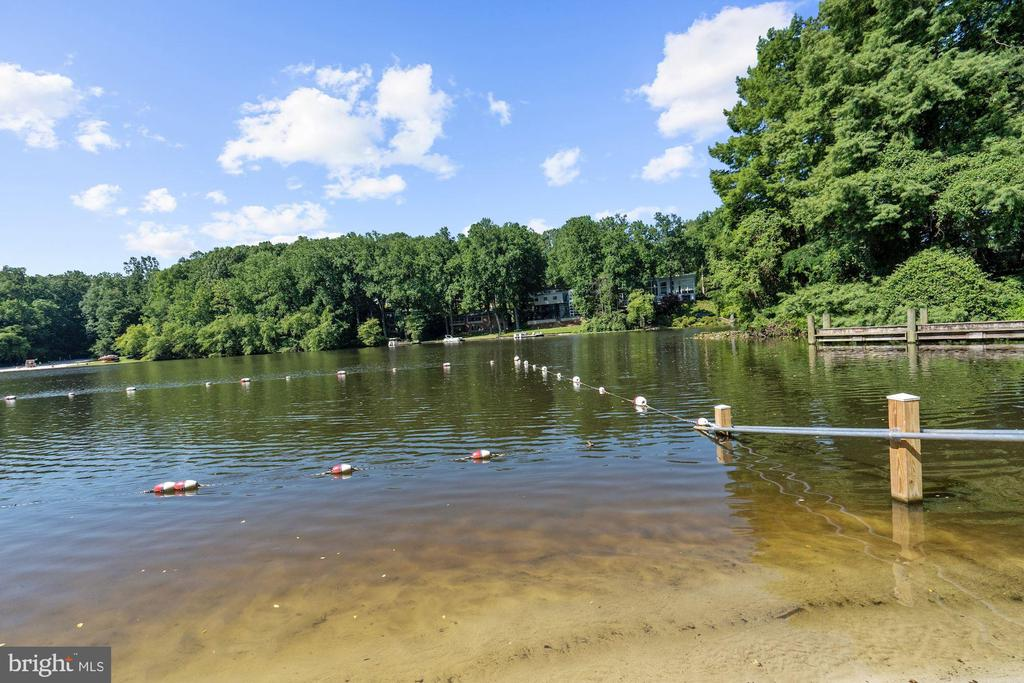 Ideal for Swimming and Fishing - 3421 STONEYBRAE DR, FALLS CHURCH