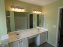 Master bath as viewed from shower area - 43114 LLEWELLYN CT, LEESBURG