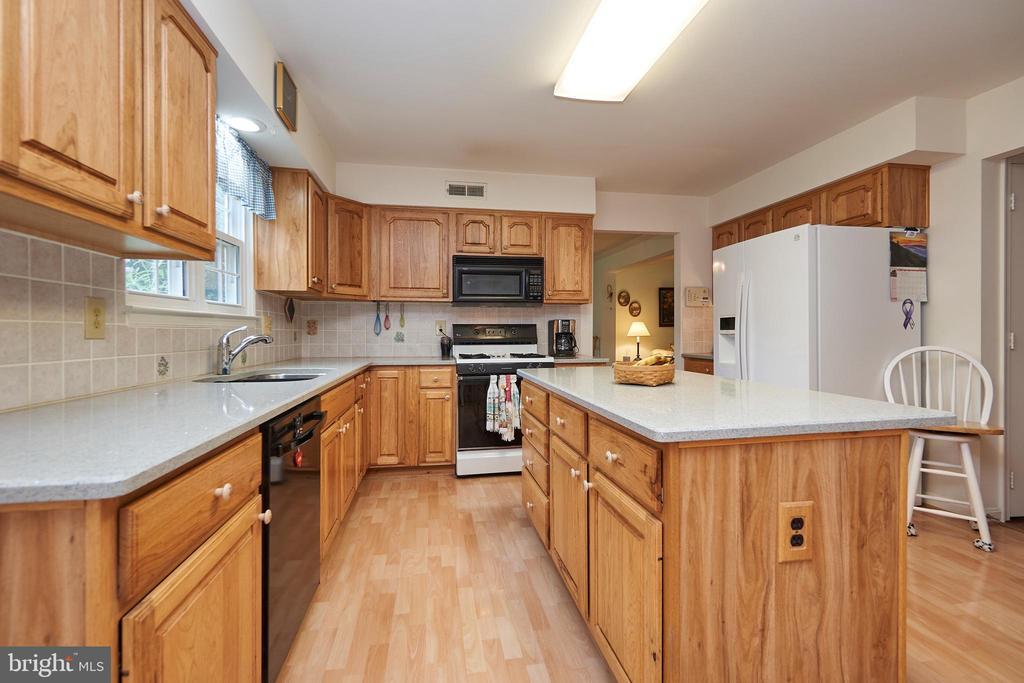 Updated Kitchen - 13715 SHELBURNE ST, CENTREVILLE
