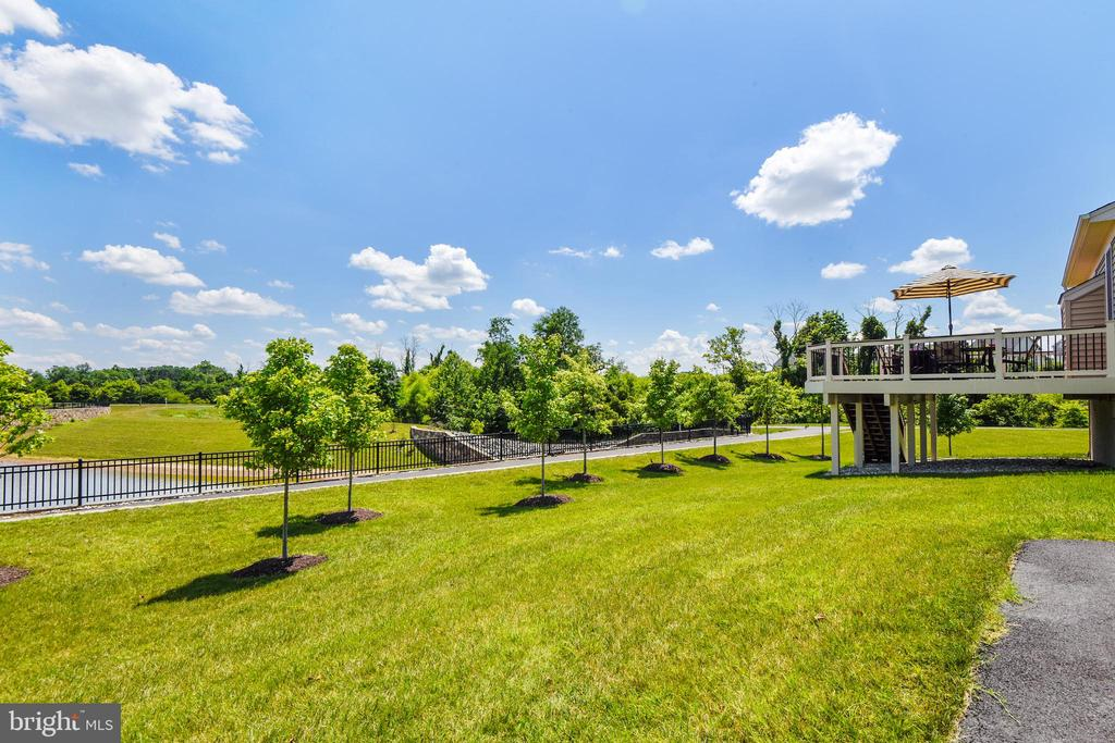 Rearview of the wooded area - wait until Fall - 22602 PINKHORN WAY, ASHBURN