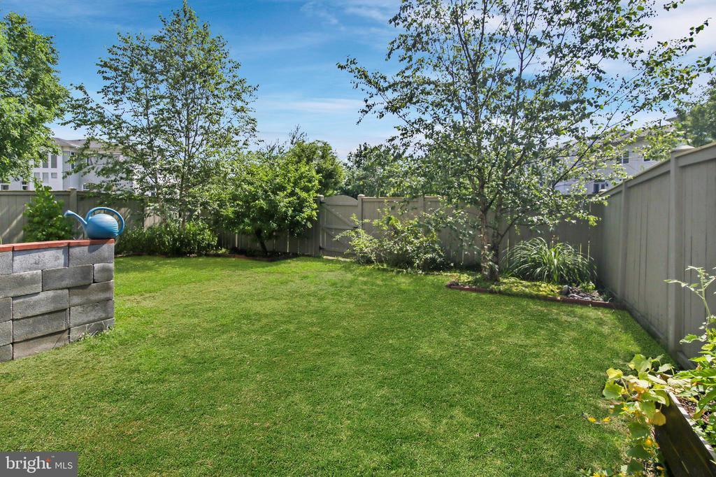 Backyard, grass seed planted, rendering - 19072 CRIMSON CLOVER TER, LEESBURG