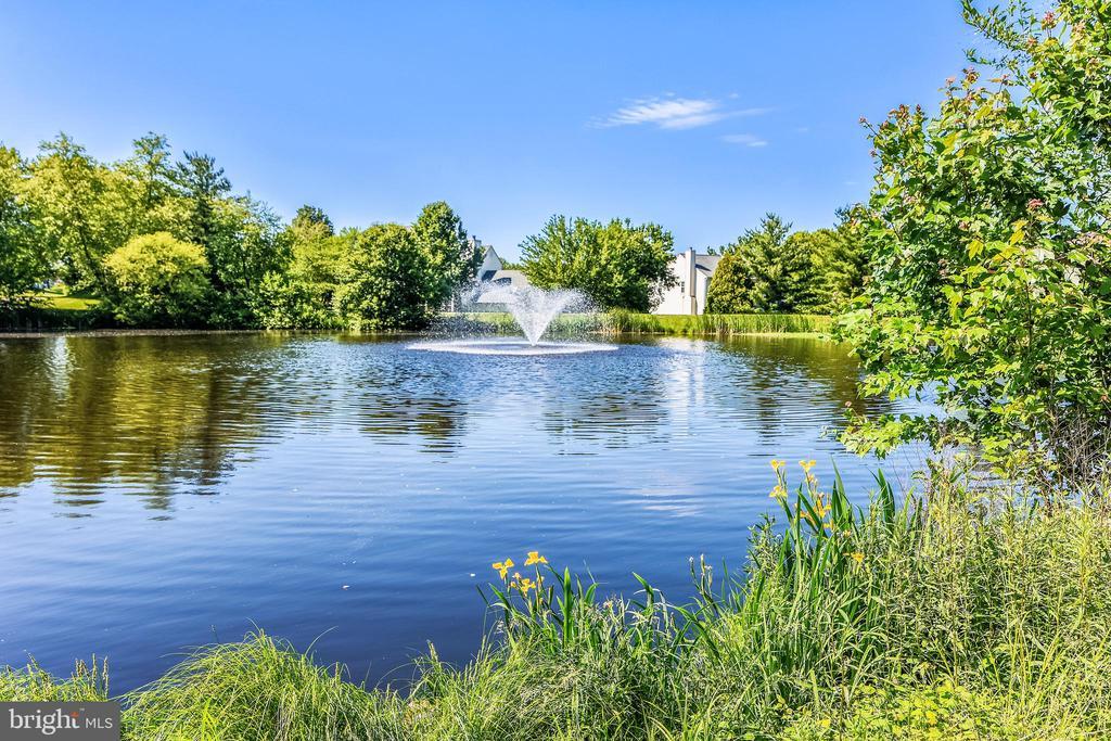 Community pond - 20810 AMBERVIEW CT, ASHBURN
