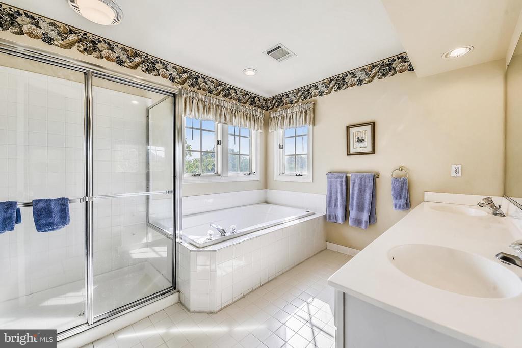 Master Bath - 20810 AMBERVIEW CT, ASHBURN