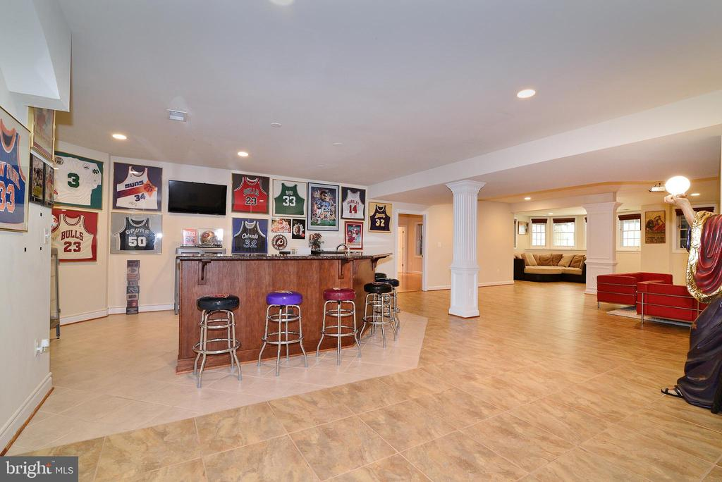 Rec Room - 6917 CHERRY LN, ANNANDALE