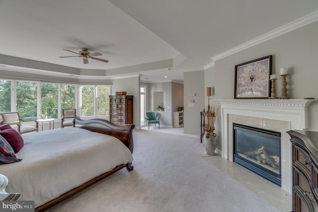 Master suite and fireplace - 43559 FIRESTONE PL, LEESBURG