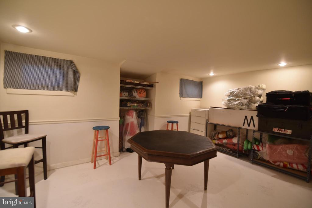Basement bonus room - 720 DONALDSON LN SW, LEESBURG