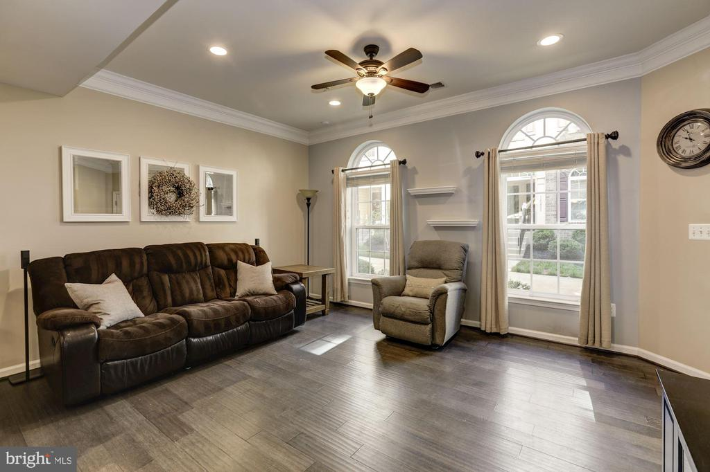 Floor to ceiling windows - 14132 HARO TRL, GAINESVILLE