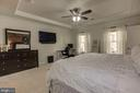 Tray ceiling in master adds architectural interest - 14132 HARO TRL, GAINESVILLE